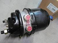 Камера гальмівна з пружинним енергоакумулятором 20/24 дискові тормоза ( RIDER)