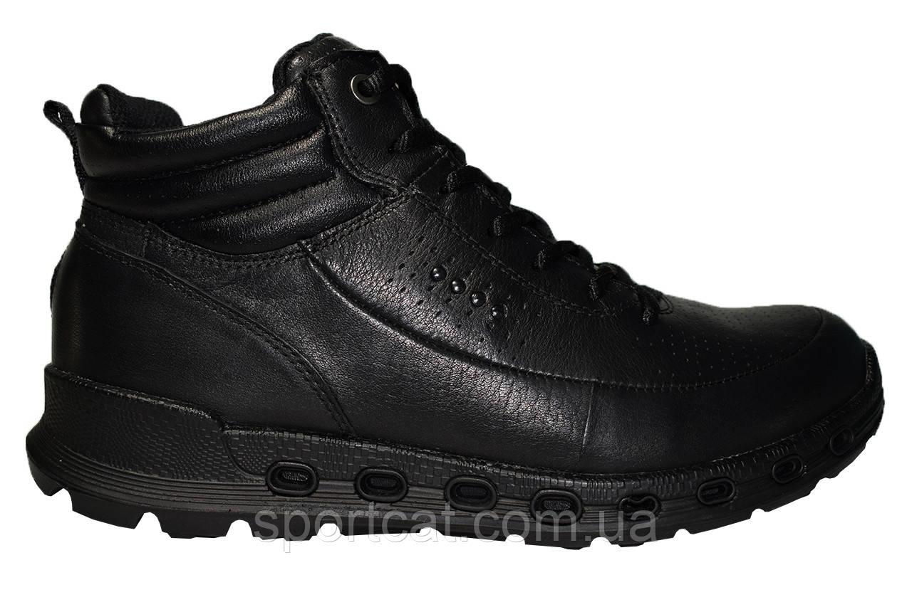 dd550561e Мужские ботинки Ecco Biom Р. 40 41 42 от интернет-магазина «Sport Cat»