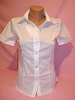 Рубашка женская строгая, фото 1