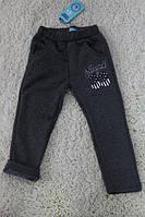 Утепленные спортивные штаны для мальчиков (мех-травка) 1  лет Цвет:серый
