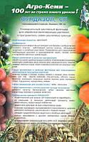 Фунгицид Фундазол 1 кг, Агро-Кеми Кфт, Украина