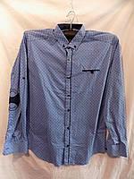 Рубашка мужская Турция весна/осень оптом