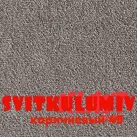 Ковролин SPINTA коричневый 49