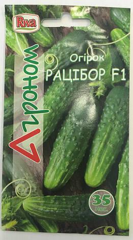 Насіння Огірок Рацібор F1 35 н Ріва Трейд, PL, фото 2