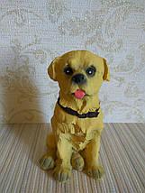 Статуэтка собачка лабрадор, фото 3