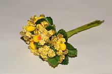 Тичинки, добавки до квітів, складні тичинки