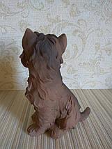 Статуэтка собачка Йоркширский терьер коричневый, фото 3