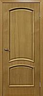 Двери межкомнатные натуральный глухая шпон Капри ДНТ