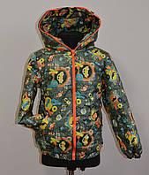 Детская осенняя куртка или ветровка для мальчика