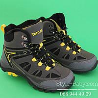 Детские ботинки евро зима тип Columbia  для мальчика ТМ ТомМ р. 31,33,34,35,37,38