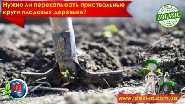 удобрение органическое_купить органическое удобрение_производство органических удобрений_купить биогумус_купить вермигрунт для рассады_купить вермигрунт универсальный_купить вермигумат_купить органическое удобрение оптом_удобрение органическое для овощных культур_удобрение органическое для плодовых кустарников_удобрение органическое для фруктовых деревьев_удобрение органическое для подкормки овощей_удобрение органическое для подкормки ягод_удобрение органическое для подкормки фруктовых деревьев_органическое земледелие_почвосмесь для цветов и кустарников_грунт для цветов и кустарников_вермигрунт для цветов и кустарников_грунт для ландшафтного озеленения_вермигрунт для ландшафтного озеленения_почвосмесь для ланшафтного озеленения_грунт для зимнего сада_почвосмесь для зимнего сада_удобрение органическое для подкормки цветов и кустарников_органическое удобрение для травяного газона_удобрени органическое для подкормки травяного газона_купить биогумус оптом_производство биогумуса_купить почвосмесь для цветов и кустарников_вермигрунт для ландшафтного озеленения_купить органические удобрения оптом_производство органических удобрений_грунт для цветов и кустарников купить оптом