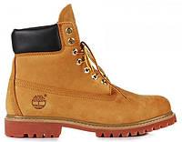 Женские ботинки Timberland 6, Тимберленд желтые