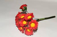 Декоративные цветы - Ромашки