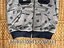 Трикотажные пайты с начесом для мальчиков S&D 116/122-140/146 р.р, фото 4