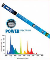 Hagen Power Spectrum (Т5) Лампа, 54 Вт