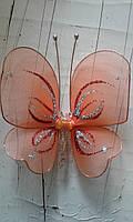 Бабочка рыжик