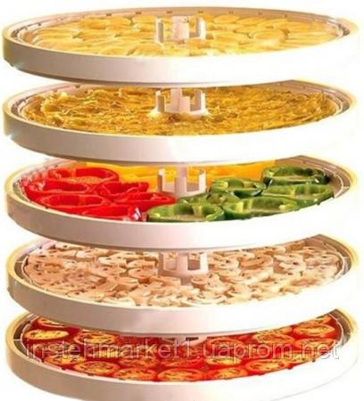 Сушилка для овощей и фруктов БелОМО 8360 (5 секций)в интернет-магазине