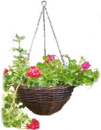 Набор подвесных цветочников из 3шт. Арт.384-3, фото 2