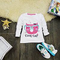Кофточка с длинными рукавами Cool cat KD0002-92р