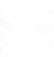 Термо ролети Арджент (білий), фото 3