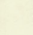 Термо ролети Арджент (шампань), фото 3