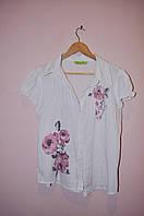 Блузка-рубашка белая с коротким рукавом