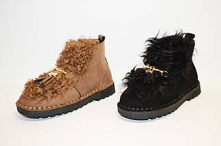 Ботинки демисезонные с мехом барашки Veritas, фото 3