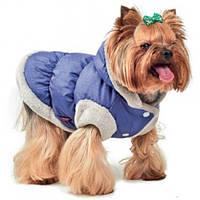 Жилет Pet Fashion Бонжур для собак S