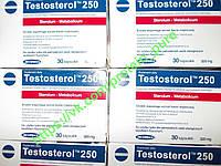Testosterol 250 (Megabol, Польша)  Тестостерол