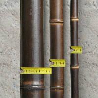 Ствол бамбука-К (чёрный) 6-7см  длина 4м