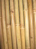 Бамбуковый  ствол (диаметр 40х50 мм, длина 3 м.)