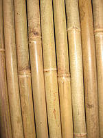 Бамбуковый  ствол (диаметр 100х110мм, длина 3 м.)