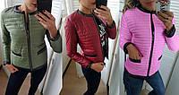 Куртка женская большие размеры весна-осень новые цвета СЕР1179