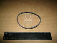 Прокладка колпака фильтра топливного КАМАЗ (пр-во Россия)