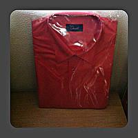 Рубашка (тенниска) Gust мужская с коротким рукавом размер 42