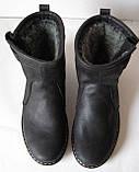 Levis! Зимние черные кожаные в стиле  Levi's Угги! Левис ботинки сапоги женские уги унисекс, фото 7