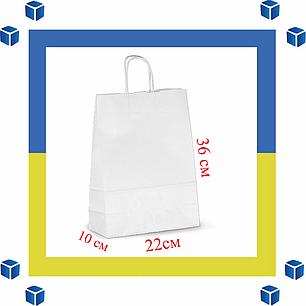 Бумажный пакет с витыми ручками (220мм/105мм/360мм), фото 2