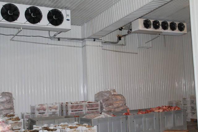Морозильная камера для хранения замороженных продуктов 150м2, -18С 2