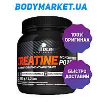Creatine monohydrate 550 г