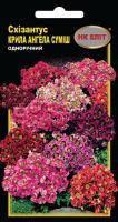 Насіння Квіти Схізантус Крила Ангела 0,2 г 1989 НК Еліт, фото 2