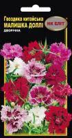 Насіння Квіти Гвоздика китайська Малишка Доллі 0,2 г 14650 НК Еліт, фото 2