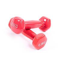Гантели для фитнеса по 0,5кг ZCN-05KG