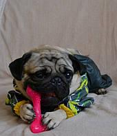 Comfy Mint Dental Bone Mix (11338) игрушка мятная для собак 12,5, фото 1