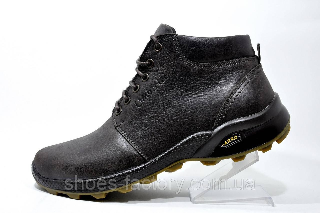 Кожаные мужские ботинки Ботус, зимние (Brown)