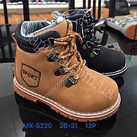 Зимние детские ботинки для мальчиков Размеры 26-31, фото 1
