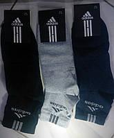"Мужские носки ""Adidas""  41-45"