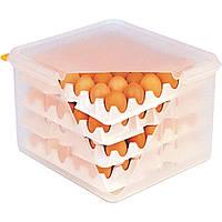 Контейнер для яиц 354х325х200 ( включает 8 секций)
