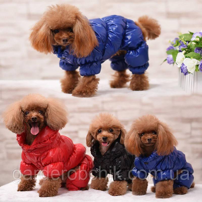 """Комбинезон зимний для собаки """"Альпы"""", куртка  для собаки. Одежда для собак"""