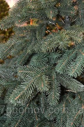 Искусственная елка литая ПРЕМИУМ Альпийская (elite class) 1.20-3.50 метра, фото 2