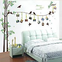 """Наклейка на стену, виниловые наклейки """"дерево с фоторамками 2м90см*205м"""" (2 листа 60*90см)"""